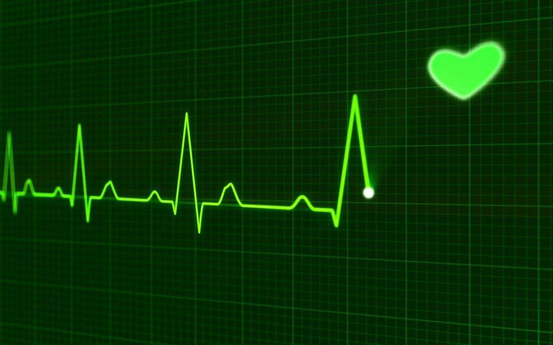 Leven naar je hartslag